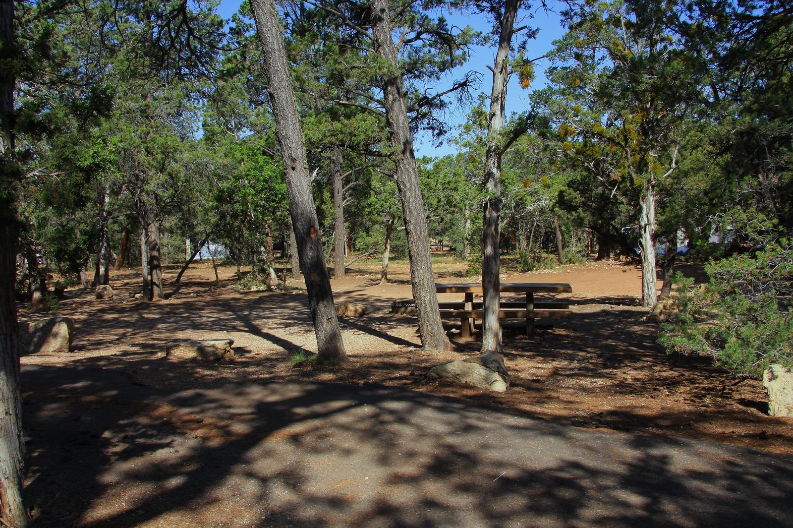 Picnic table, fire pit, and park spot, Mather CampgroundPicnic table, fire pit, and park spot for Oak Loop 235, Mather Campground