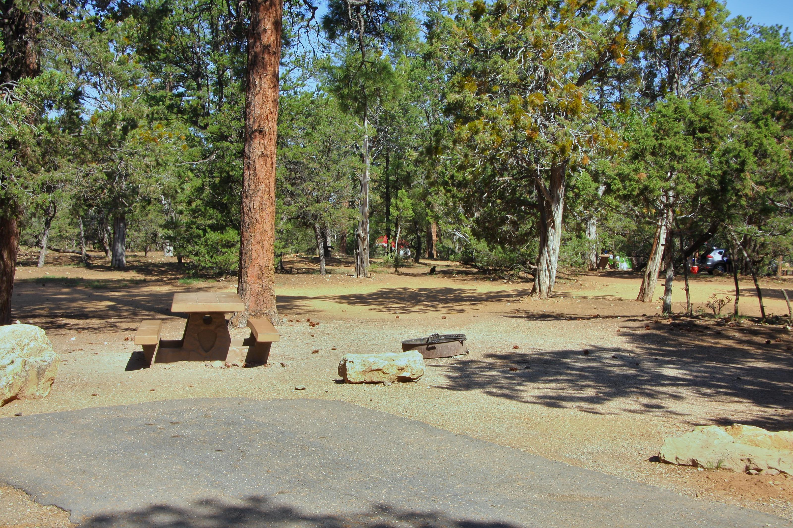 Picnic table, fire pit, and park spot, Mather CampgroundPicnic table, fire pit, and park spot for Oak Loop 248, Mather Campground
