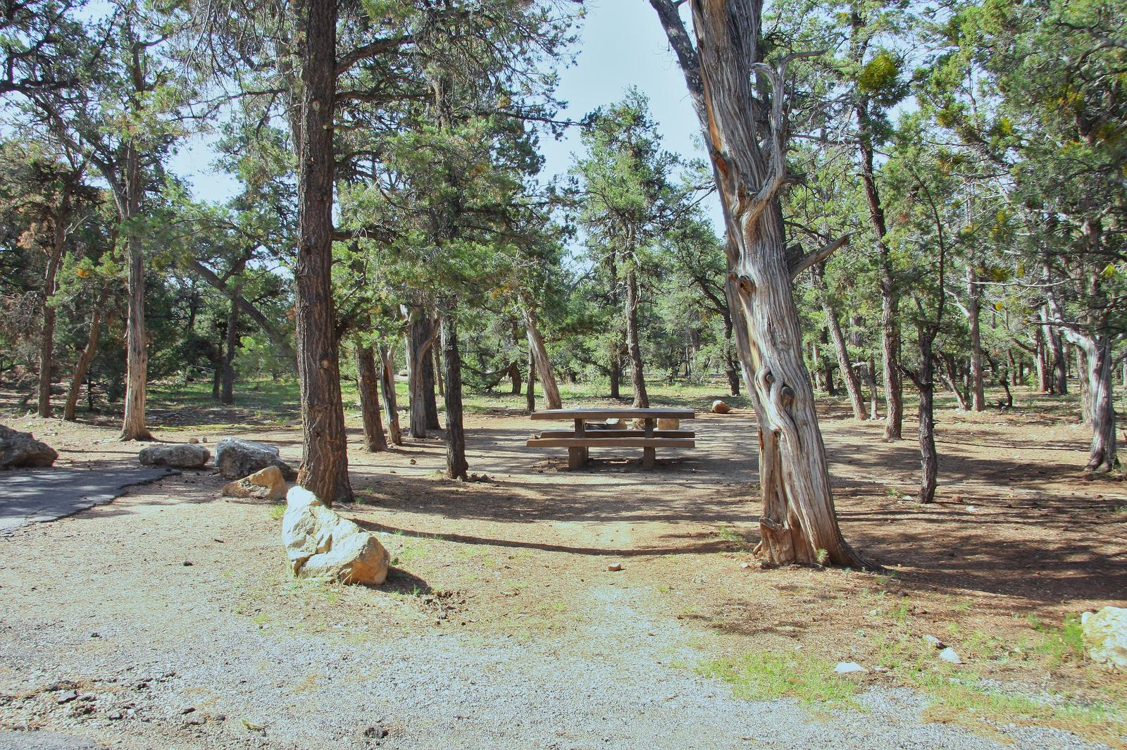 Picnic table, fire pit, and park spot, Mather CampgroundPicnic table, fire pit, and park spot for Oak Loop 251, Mather Campground