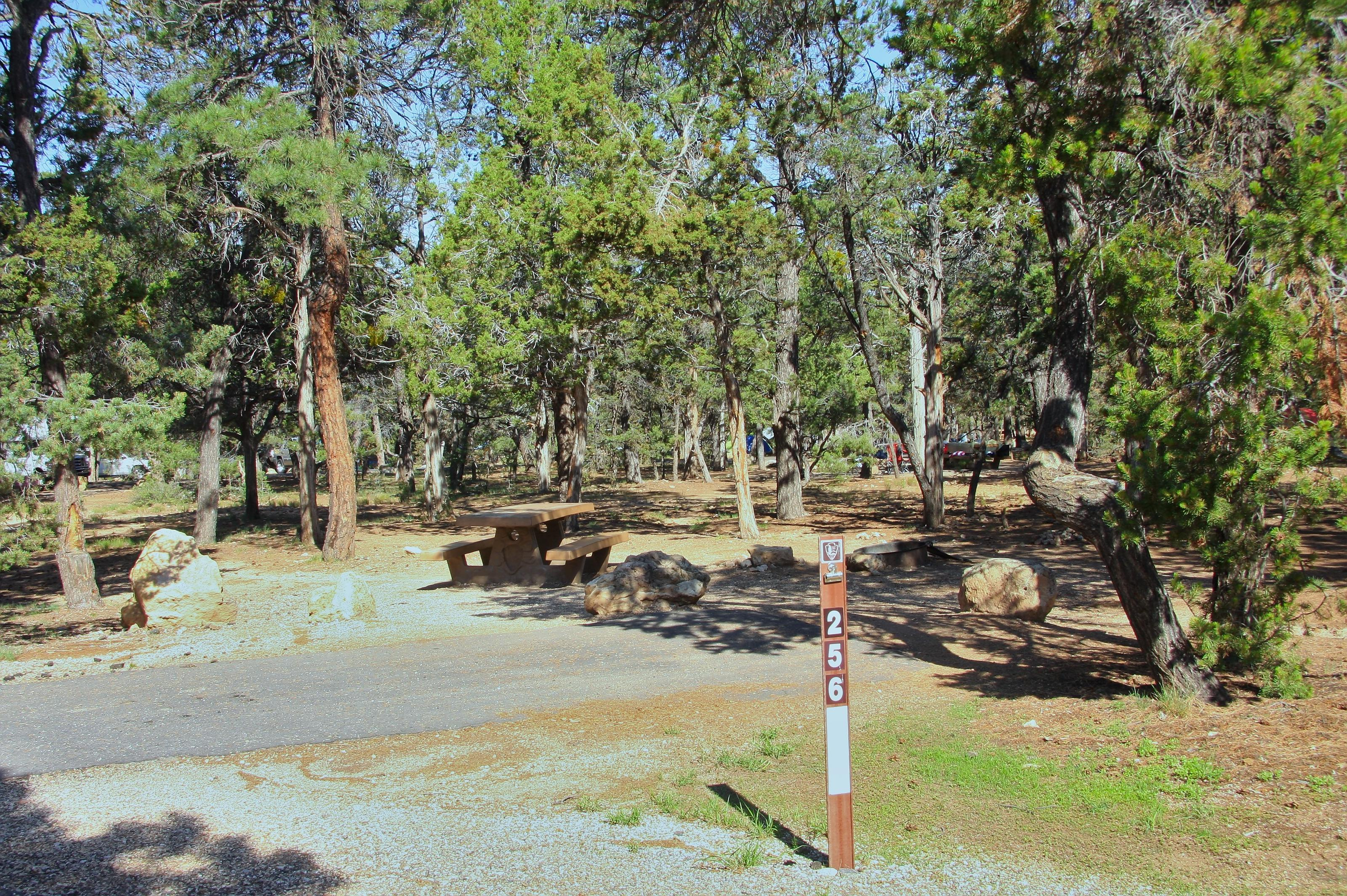 Picnic table, fire pit, and park spot, Mather CampgroundPicnic table, fire pit, and park spot for Oak Loop 256, Mather Campground