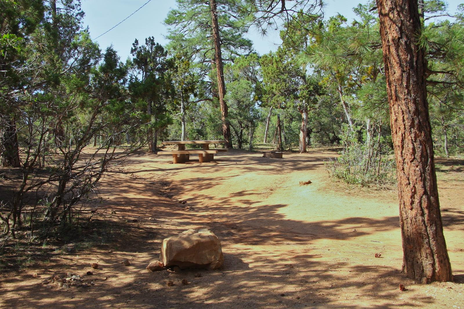 Picnic table and fire pit, Mather CampgroundPicnic table and fire pit for Oak Loop 259, Mather Campground