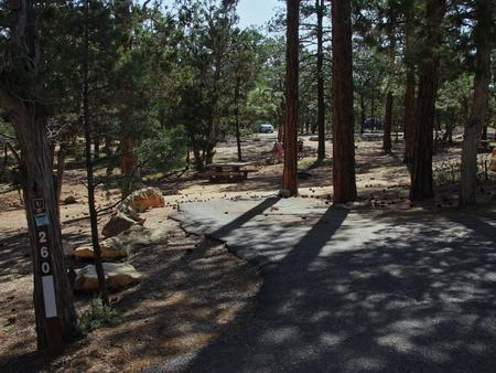 Picnic table, fire pit, and park spot, Mather CampgroundPicnic table, fire pit, and park spot for Oak Loop 260, Mather Campground