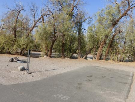 Furnace Creek Campground standard nonelectric site #88 with picnic table and fire ring.