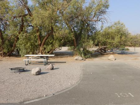 Furnace Creek Campground standard nonelectric tent only drive in site #101 with picnic table and fire ring.
