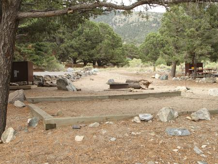 Site #12, Pinon Flats Campground