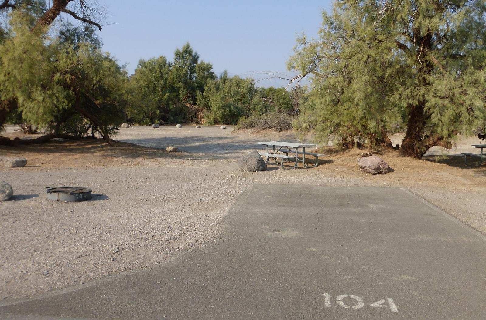 Furnace Creek Campground standard nonelectric tent only drive in site #104 with picnic table and fire ring.