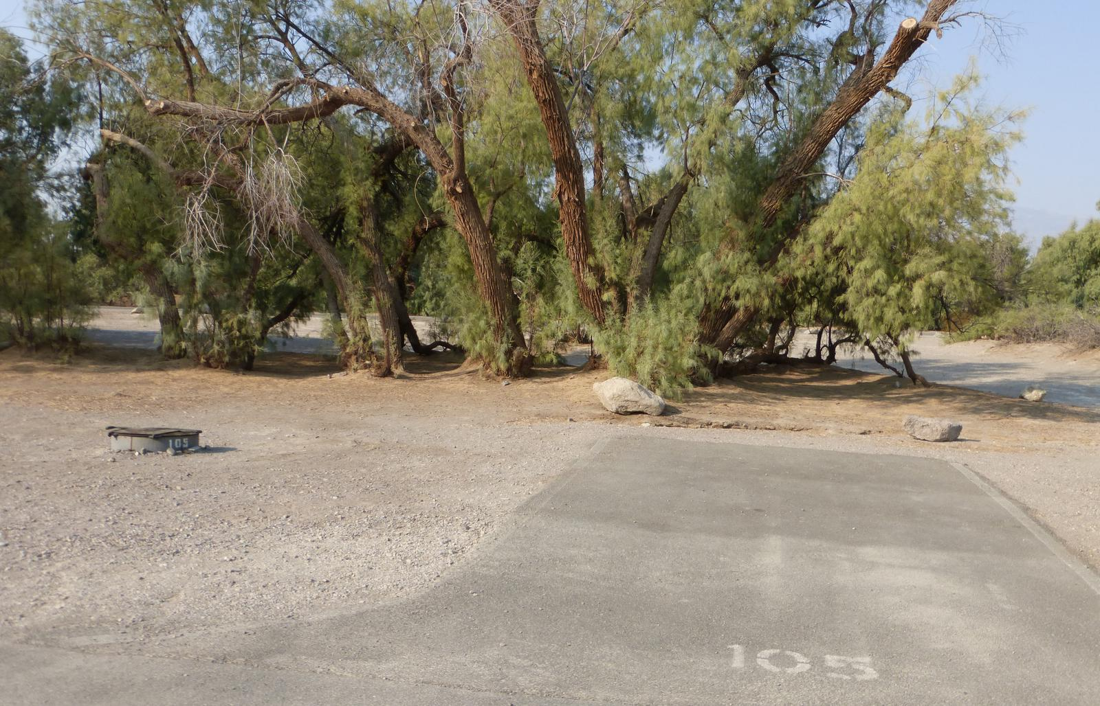 Furnace Creek Campground standard nonelectric tent only drive in site #105 with picnic table and fire ring.