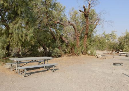 Furnace Creek Campground standard nonelectric tent only drive in site #106 with picnic table and fire ring.