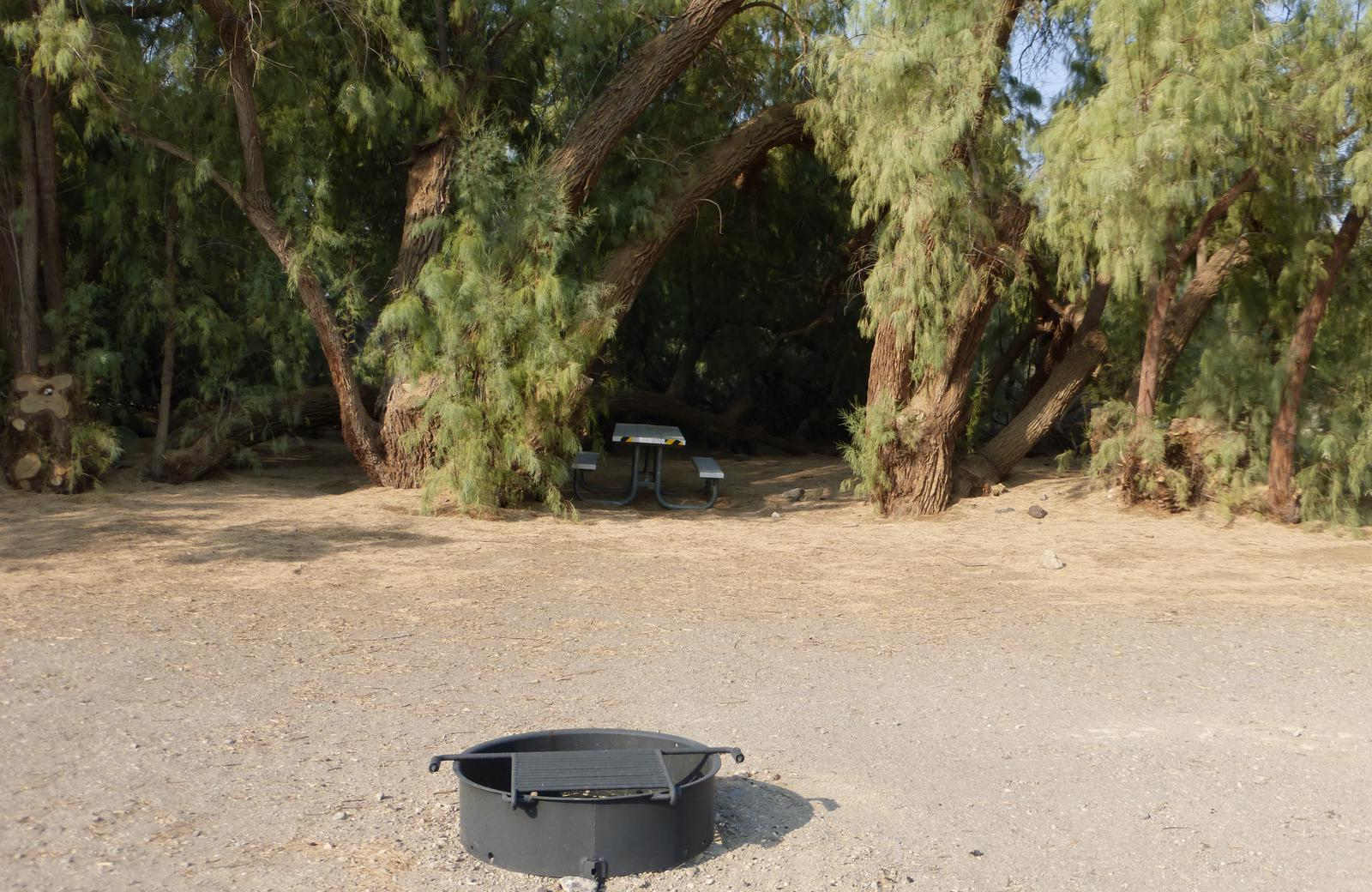 Furnace Creek Campground standard nonelectric tent only drive in site #108 with picnic table and fire ring.