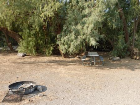 Furnace Creek Campground standard nonelectric tent only drive in site #109 with picnic table and fire ring.