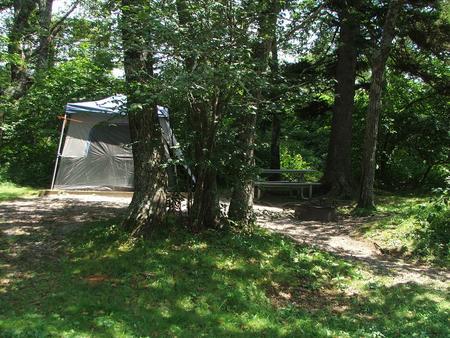 C Loop Site 1 - Tent Nonelectric