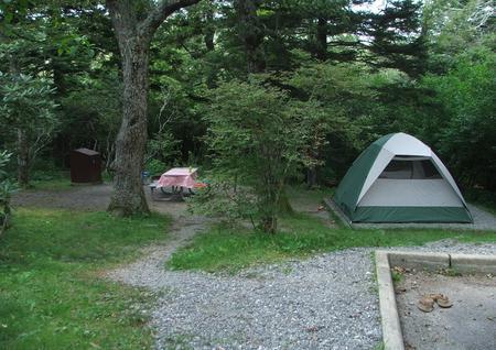 C Loop Site 4 - Tent Nonelectric