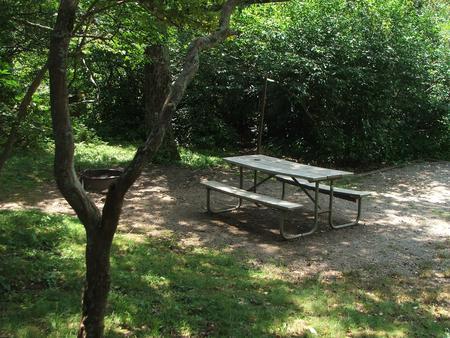C Loop Site 8 - Tent Nonelectric Picnic