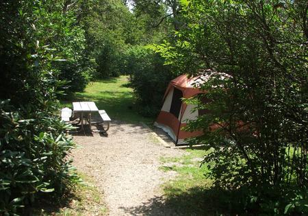 C Loop Site 13 - Tent Nonelectric