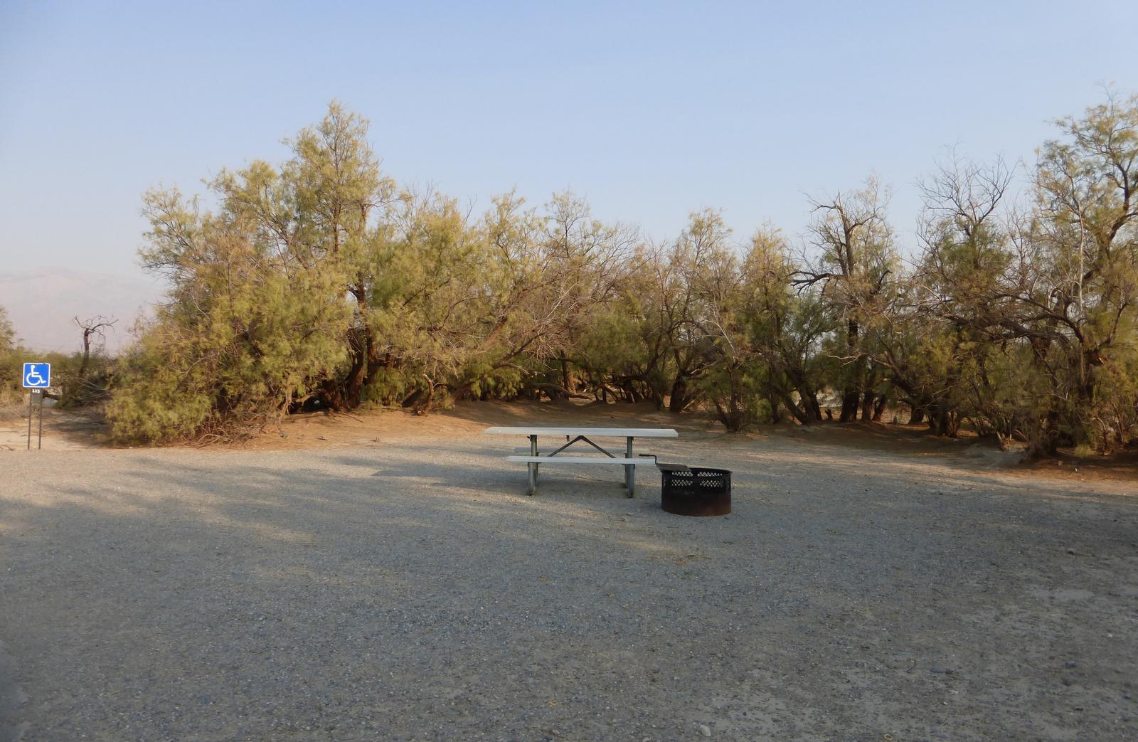 ADA accessible tent only walk in site #115.  No campervans, RV's, or pop up tents.  One accessible firepit with grate and picnic table.  No utilities.