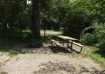 C Loop Site 20 - Tent Nonelectric