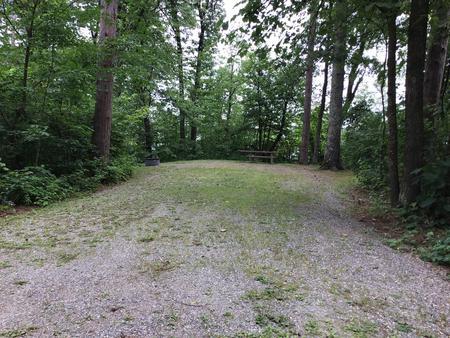 Site 15 South