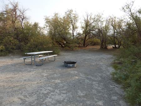 Tent only walk in site #116.  No campervans, RV's, or pop up tents.  One firepit with grate and one picnic table.  No utilities.
