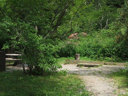 C Loop Site 22 - Tent Nonelectric