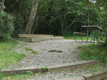 C Loop Site 25 - Tent Nonelectric