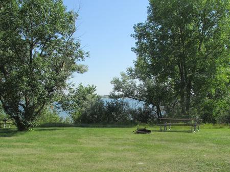 Campsite #62 Wolf Creek Campground