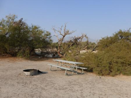 Tent only walk in site #122.  No campervans, RV's, or pop up tents.  One firepit with grate and one picnic table.  No utilities.