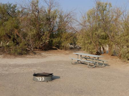 Tent only walk in site #123.  No campervans, RV's, or pop up tents.  One firepit with grate and one picnic table.  No utilities.