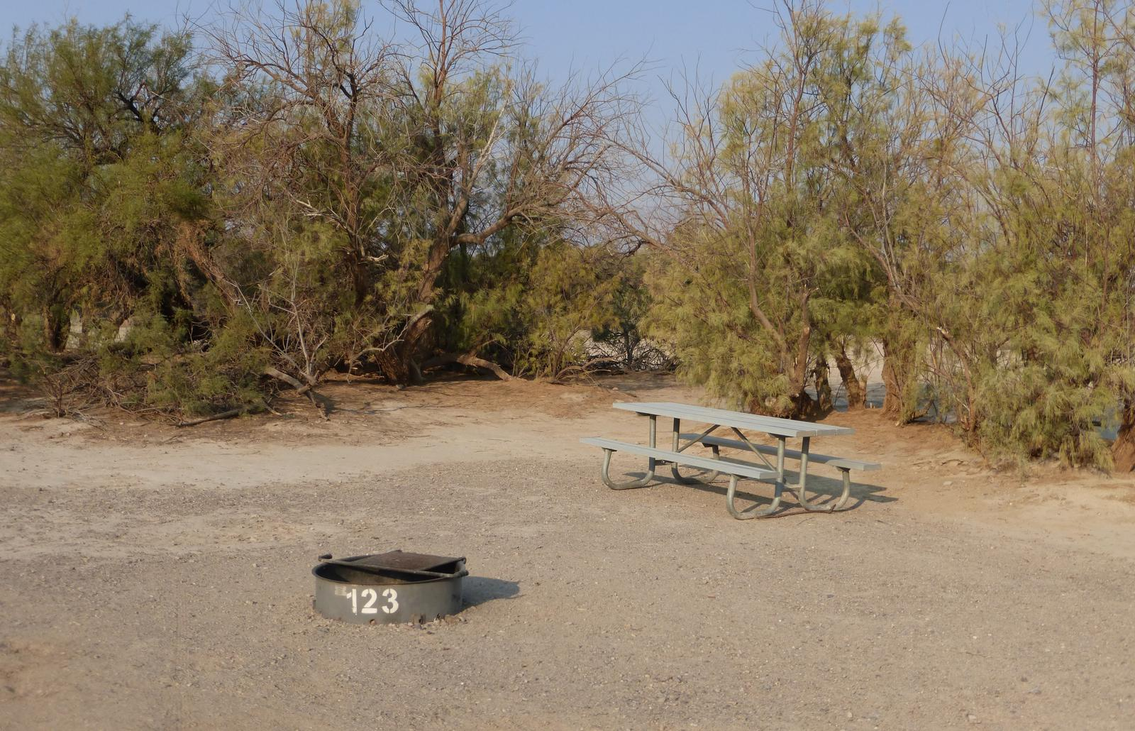 Tent only walk in site #123.  No campervans, RV's, or pop up tents.  One firepit with grate and one picnic table.  No utilities