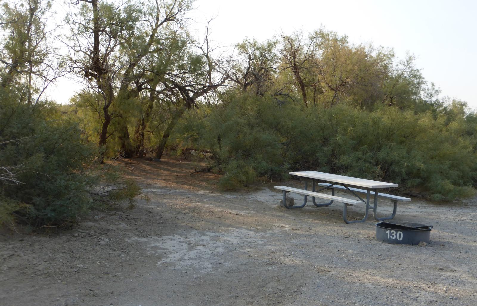 Tent only walk in site #130.  No campervans, RV's, or pop up tents.  One firepit with grate and one picnic table.  No utilities.
