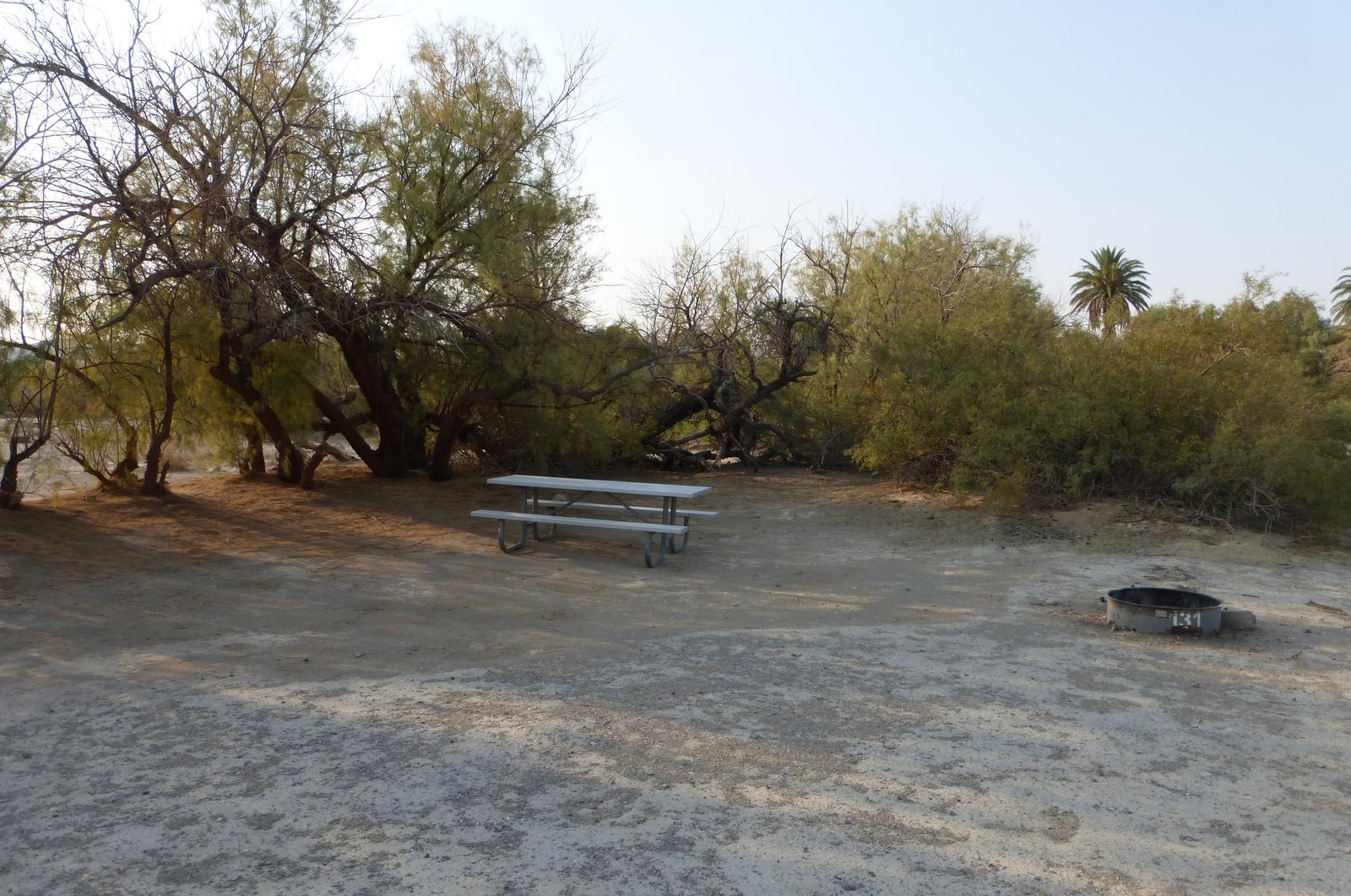 Tent only walk in site #131.  No campervans, RV's, or pop up tents.  One firepit with grate and one picnic table.  No utilities.