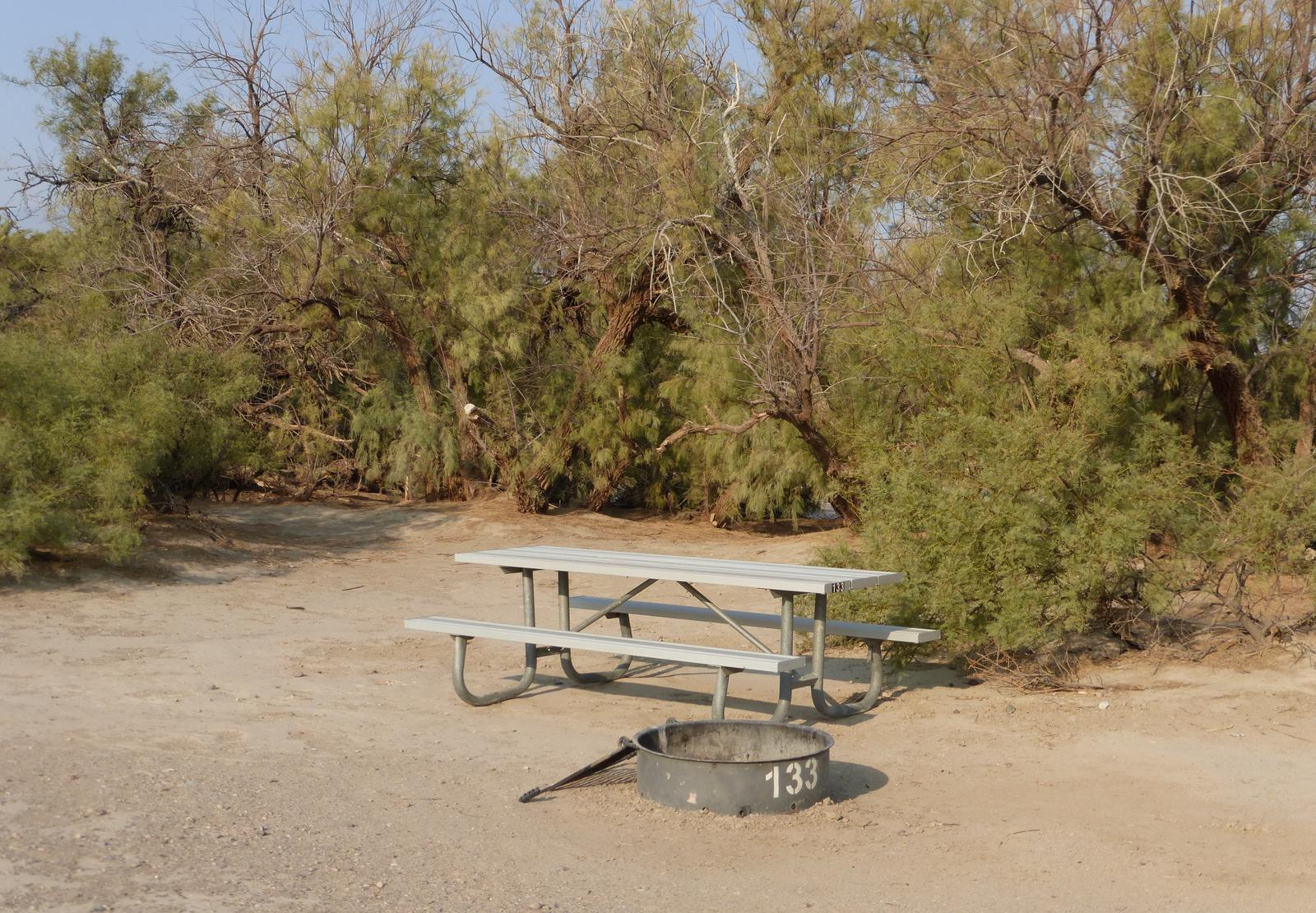 Tent only walk in site #133.  No campervans, RV's, or pop up tents.  One firepit with grate and one picnic table.  No utilities.