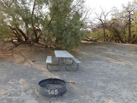Tent only walk in site #145.  No campervans, RV's, or pop up tents.  One firepit with grate and one picnic table.  No utilities.