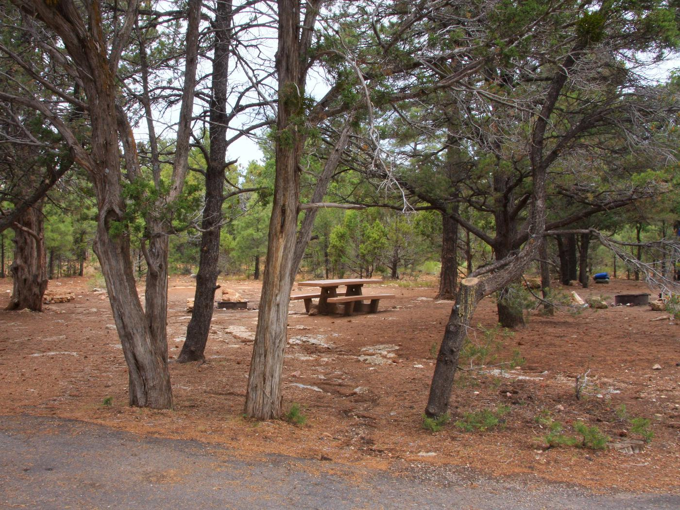 Picnic table, fire pit, and parking spot, Mather CampgroundPicnic table, fire pit, and parking spot for Pine Loop 277, Mather Campground