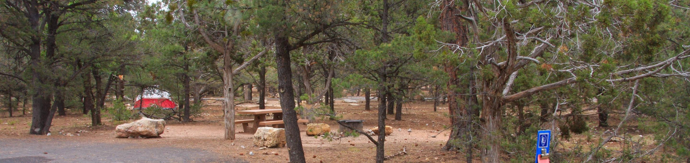 Picnic table, fire pit, and parking spot, Mather CampgroundPicnic table, fire pit, and parking spot for Pine Loop 278, Mather Campground