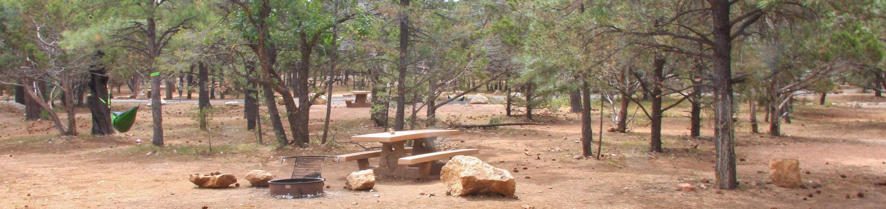Picnic table, fire pit, and parking spot, Mather CampgroundPicnic table, fire pit, and parking spot for Pine Loop 282, Mather Campground