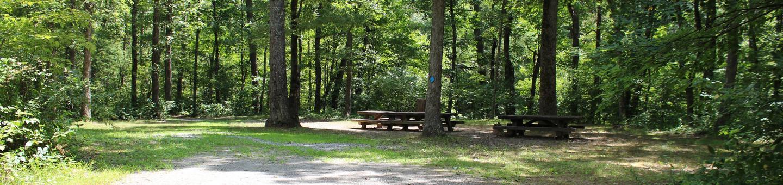 'Blue' site at Steel Bridge Campground