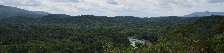 Potomac River near 15 Mile Creek