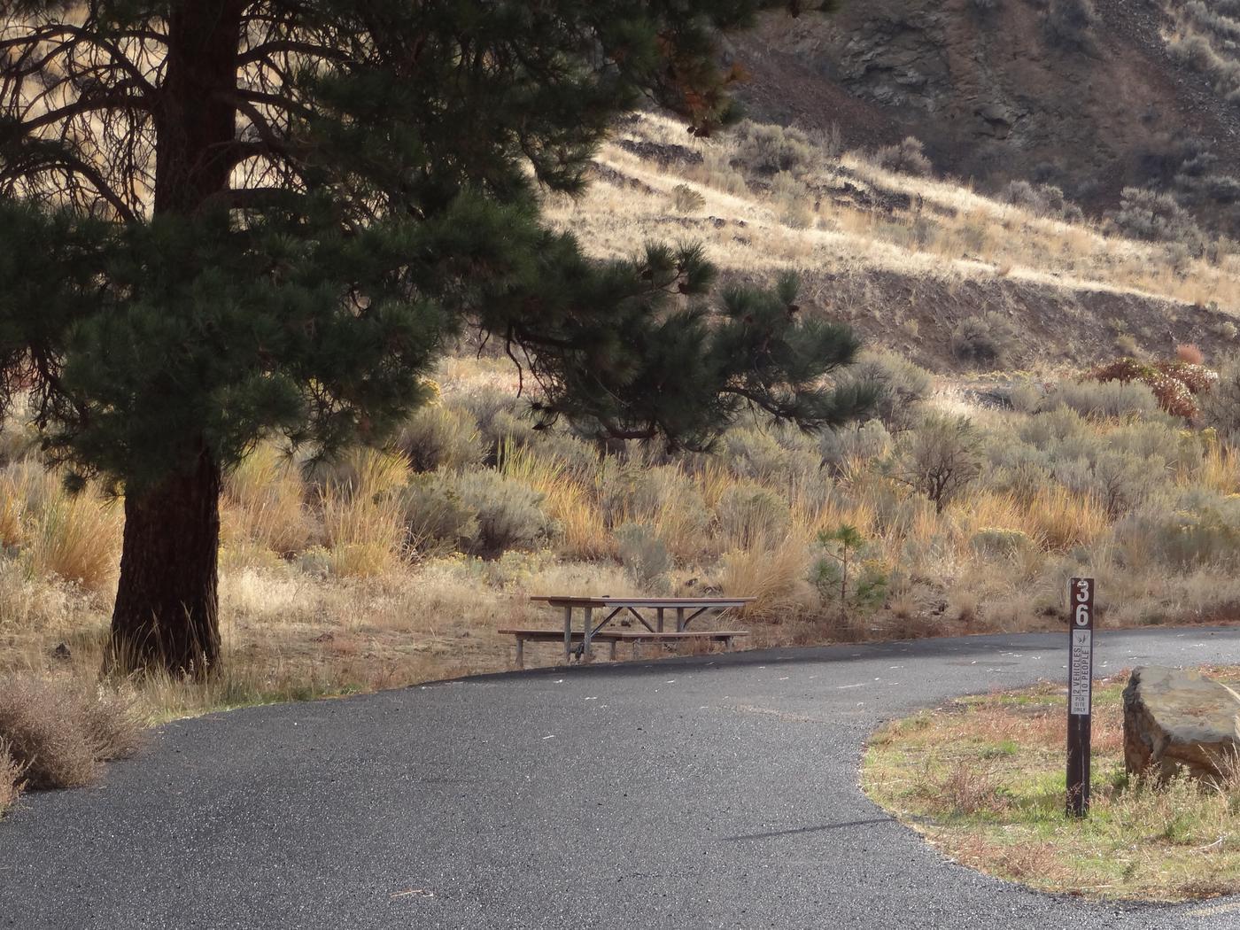 Parking pad, picnic table at Big Pines campsite #36.Big Pines campsite #36
