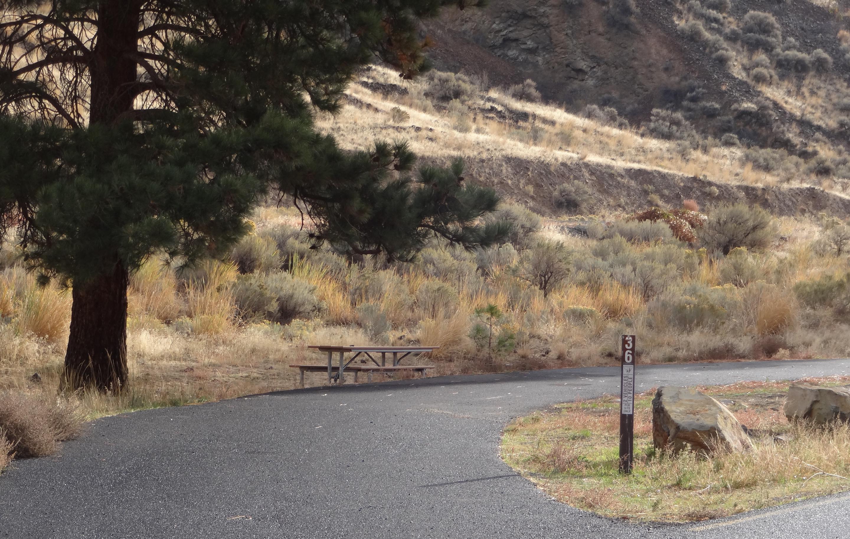 Picnic table, parking pad at Big Pines Campsite 36.Big Pines Campsite #36