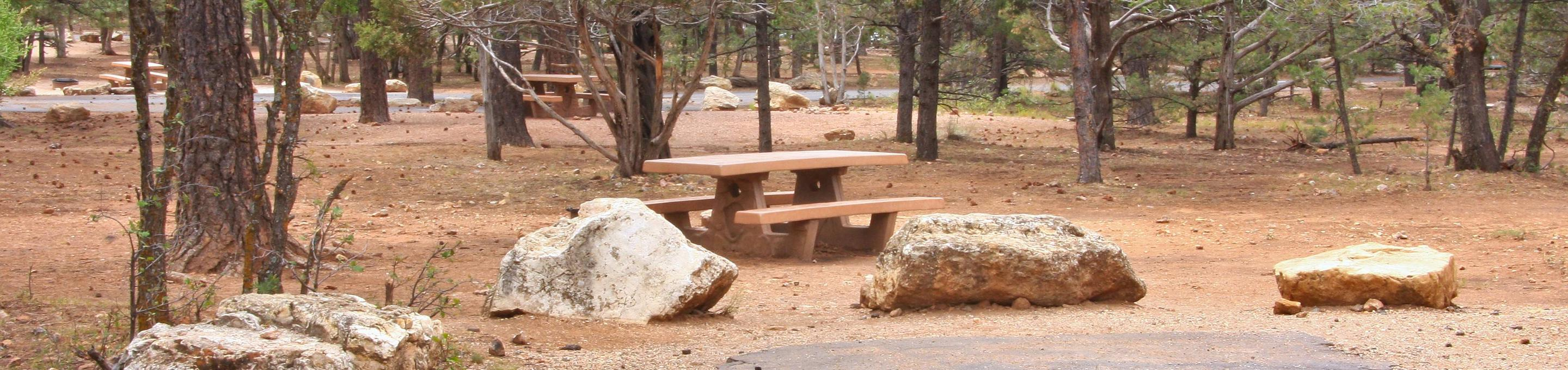 Picnic table and parking spot, Mather CampgroundPicnic table and parking spot for Pine Loop 284, Mather Campground