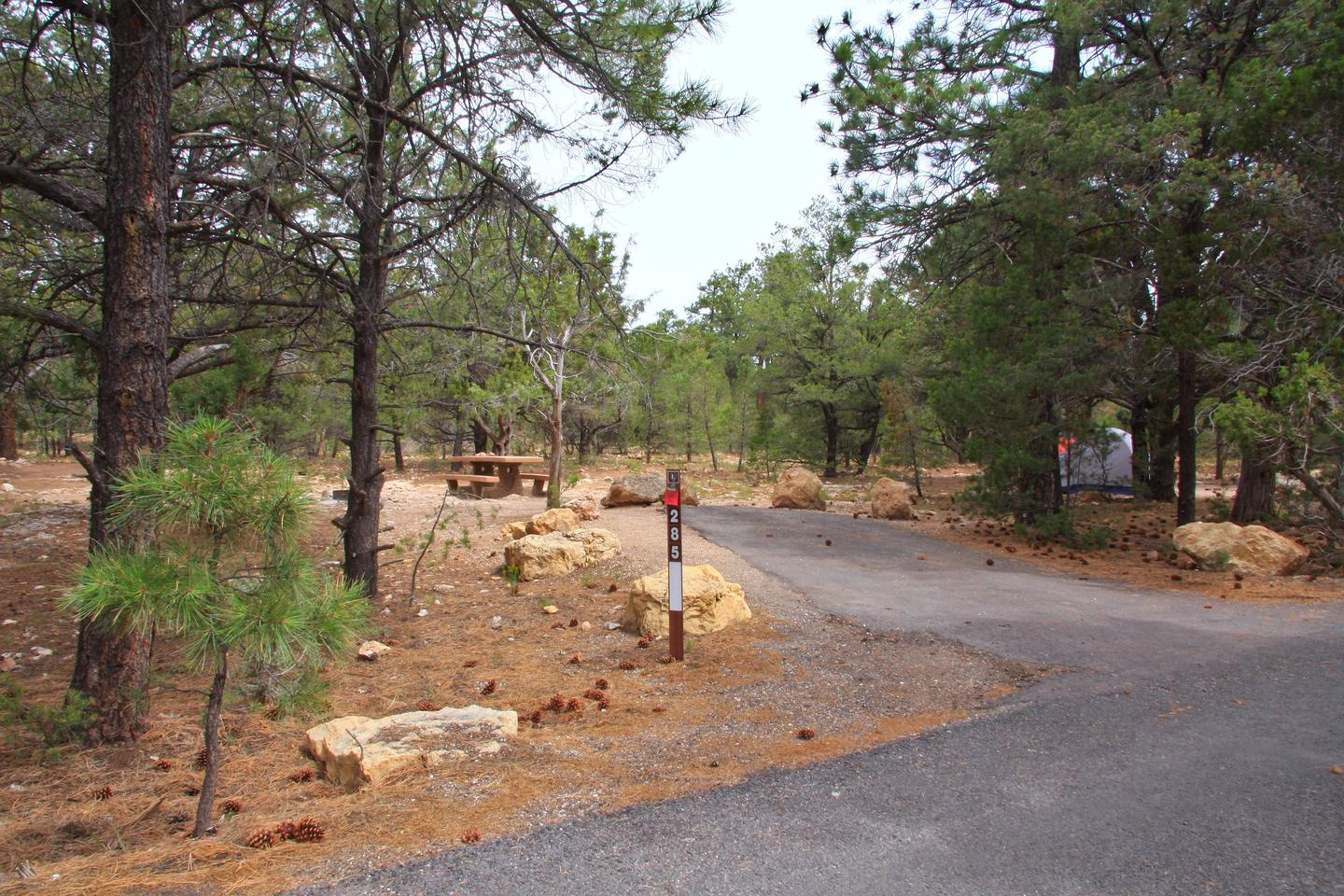 Picnic table, fire pit, and parking spot, Mather CampgroundPicnic table, fire pit, and parking spot for Pine Loop 285, Mather Campground