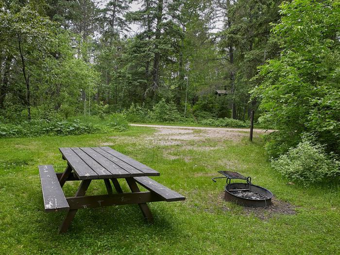 Lake Jeanette site #1 picnic tableSite 01