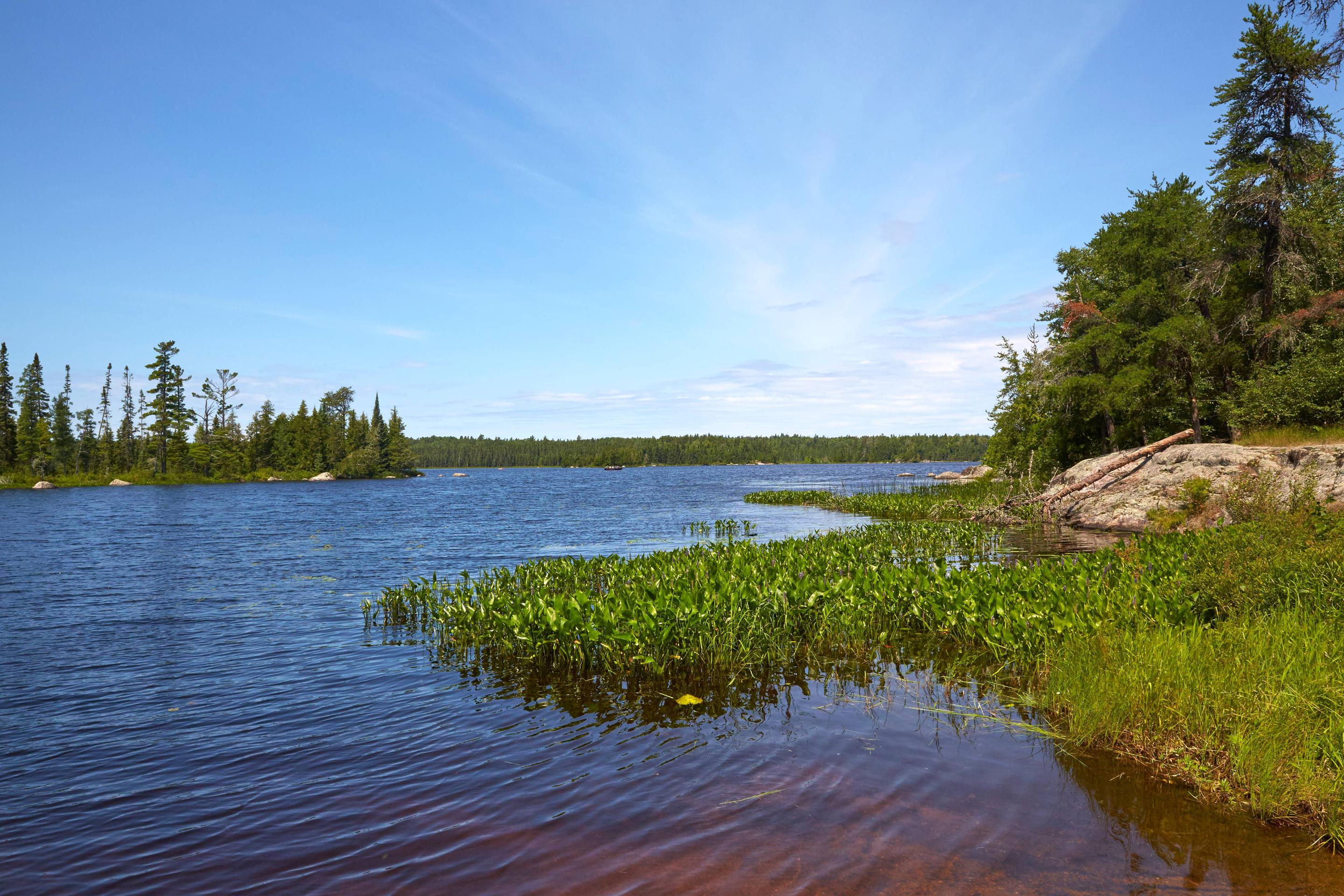 View of Lake Jeanette