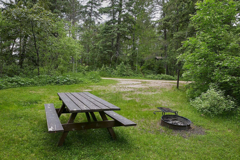 Lake Jeanette site #1 picnic tablePicnic Table