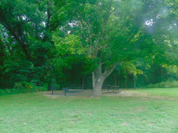 Tyler Bend Group Site 1-1Three picnic tables; two lantern holders; two charcoal cooking stands; one large fire pit.