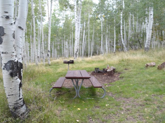 Buckboard CampgroundSite #2