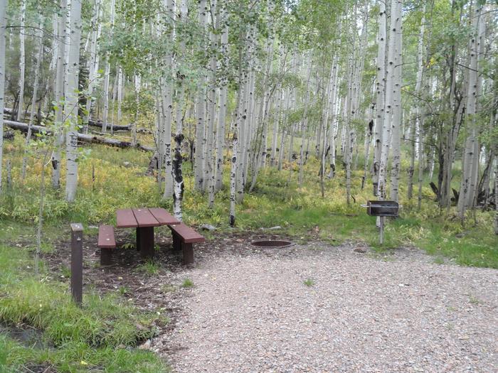 Buckboard CampgroundSite #5