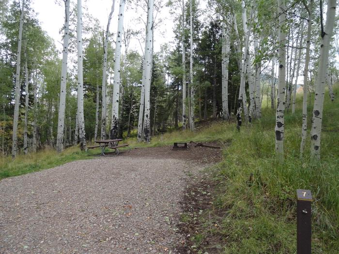 Buckboard CampgroundSite #7