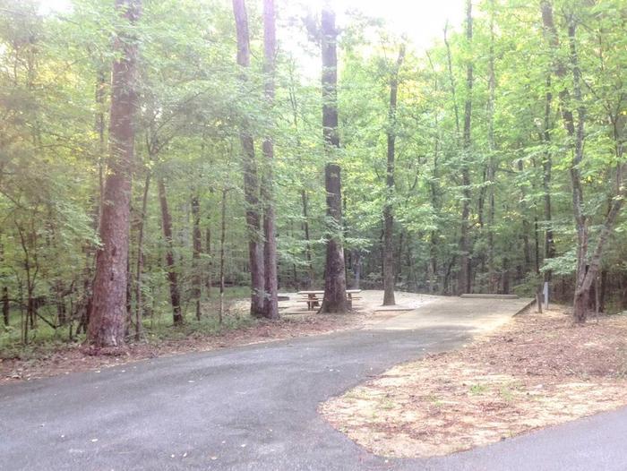 Deerlick Creek Campsite 2 Site #2