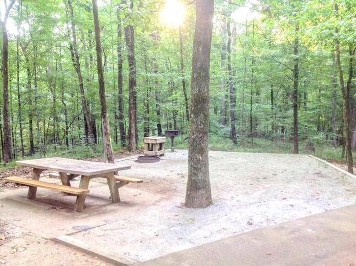 Deerlick Creek Campsite 2 Picnic AreaSite #2 Picnic Area